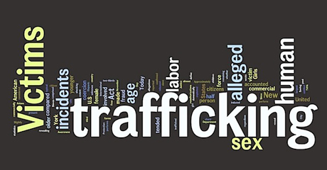 Information Technology Becomes Tool to Stop Human Trafficking ... 2f621d41f